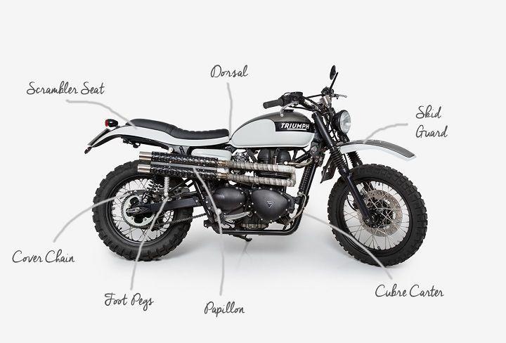 Triumph Bonneville Scrambler Pegaso - Tamarit Spanish Motorcycles