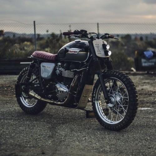Triumph Bonneville T100 Scrambler – Kinetic Motorcycles